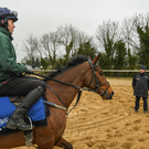 DOUBLE ROLL: Trainer Gordon Elliott and Tiger Roll at the launch of the 2019 Boylesports Irish Grand National at Gordon Elliott's yard in Longwood, Meath yesterday. Photo: Ramsey Cardy/Sportsfile