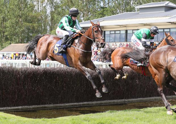 FLYING HIGH: Top Of The Charts can score. Photo: racingpost.com