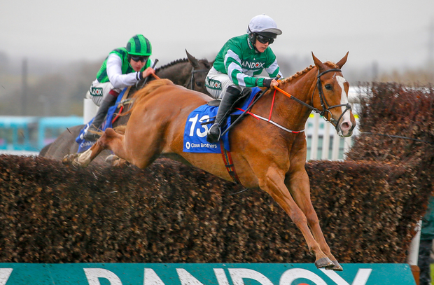CHANCE: Moon Over Germany can return to the winner's enclosure this evening. Photo: racingpost.com