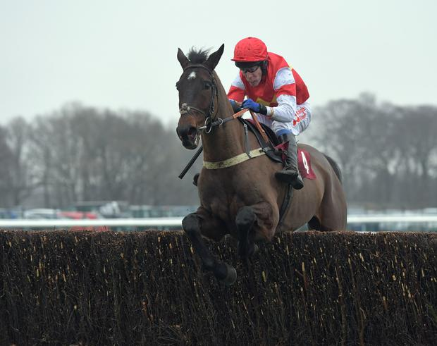 PROVEN: Slate House ticks a lot of boxes in the Bet Victor Gold Cup at Cheltenham today. Pic: Martin Lynch