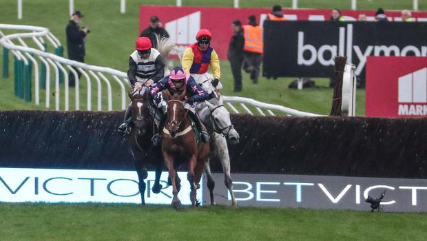 COURSE AND DISTANCE: Count Meribel (red cap) winning at Cheltenham last year.