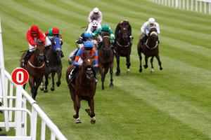 Home Of The Brave winning the Minstrel Stakes at The Curragh last year. Pics: www.racingpost.com