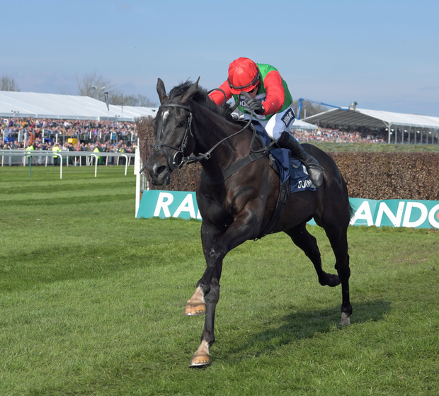 Destrier looks a solid bet Pic: Racing Post
