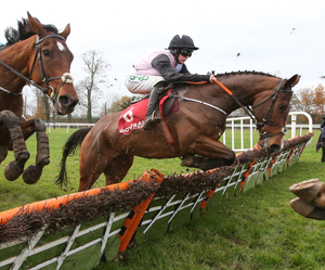 Eagle Moon can deliver for Henry de Bromhead