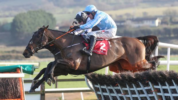 SWEET TUNE: Minella Melody is expected to come out on top in the Solerina Hurdle. Pic: Caroline Norris