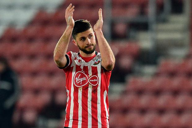 Shane Long celebrates. Photo: Getty