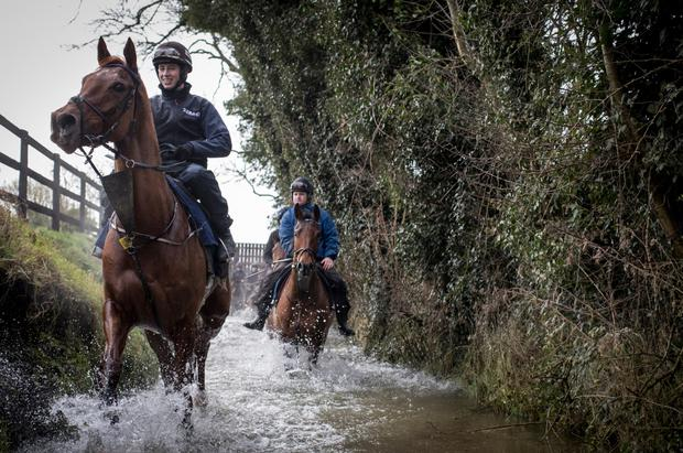 Tombstone and Bryan Cooper walking through the stream at Cullentra House Stables in Longwood. Photo: Racing Post