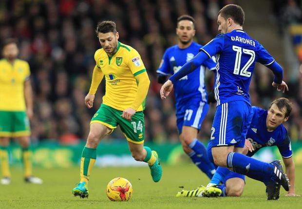 Wes Hoolahan in action for Norwich at Carrow Road. Photo: REUTERS