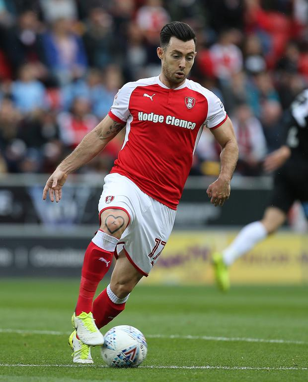 Brighton's Richie Towell is currently on loan at League One side Rotherham United
