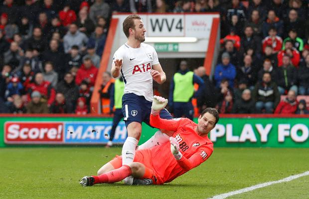 AGONY: Harry Kane will undergo a scan after this collision with Asmir Begovic. REUTERS