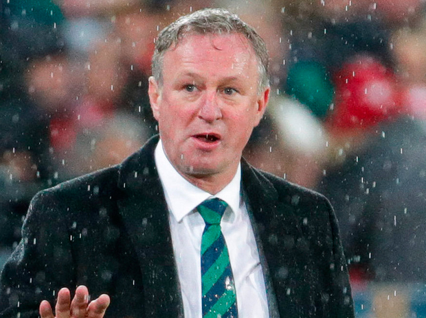 CONTROVERSY: Northern Ireland manager Michael O'Neill
