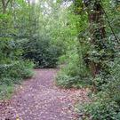 Enjoy a nature trail for National Biodiversity Week