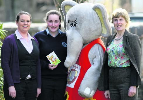 Tralee Credit Union Youth Mascot, Ellie the Elephant, visited St Joseph's school to help the student's union launch its saving scheme. Photo by John Reidy