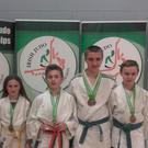 The Palmer family from Firies who recently took part in the All Ireland Judo Competition in Dublin and won three Bronze and two Gold medals in their category