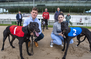 Back: John O'Keeffe, Lixnaw; Martin and Patrick Moriarty from Tralee, and John Kelliher, Tralee. Front: Paul O'Connor from Cahersiveen, Chairperson of Kingdom Greyhound Stadium Group, and Julianne O'Keeffe from Lixnaw. Photo by Domnick Walsh