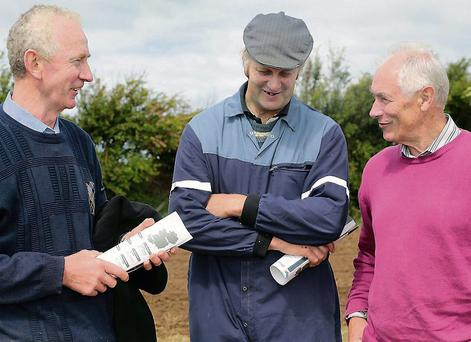 James McElligott and Tom McElligott, Tralee, and (inset) George O'Callaghan, Castleisland, Pat Landers, Ballymullen, Denis O'Connor, Abbeydorney. Photo: Valerie O'Sullivan