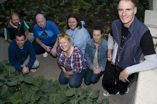 At the North Kerry Horticulture Course on Thursday evening were: Redmond Shine, Kathleen Barrett, Geraldine Kenny, James Purcell, David Lawlor, Leonard Evans, Denise Moran. Photo by John Reidy