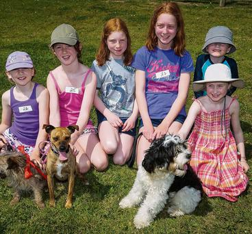 Lucy, Emily, Molly, Roisin, Laura, Lou and Luke O'Donovan, Bouleeshere, with Jasper, Penny and Oscar the dogs at the summer festival dog show on Saturday