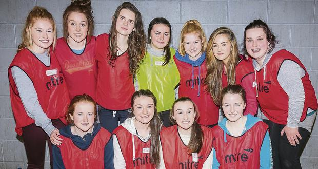 Presentation Secondary School TY volunteers Kate Shannon, Tara Fitzgerald, Anna Sugrue, Rebecca Murphy, Claire Dillon, Maeve Carmody, Mairead Dowling, Rebecca O'Neill, Katie Dillon, Niamh O'Connor and Sophie O'Connor