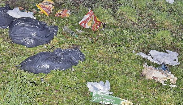 Rubbish bags and half a turkey dumped in an empty grassy lot in Cúilín over the festivities.