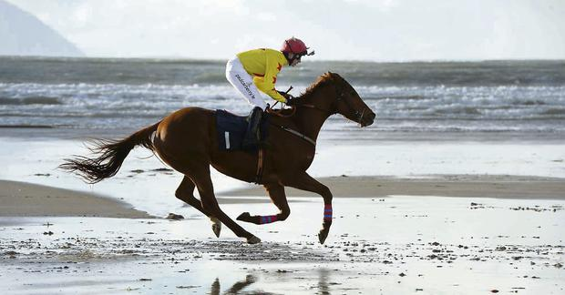Jack Kennedy from Dingle on board David Granville's 'Rock Hopper' as he rode to victory in the Noreen and Donal B Leane Memorial Cup two-mile race at Ballyheigue Races on Saturday.
