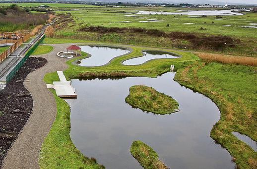 Tralee Wetlands Project