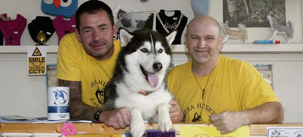 Maurice Enright, Hatchi and Merv Morrissey of Sera Husky Animal Rescue at opening of their new charity shop.