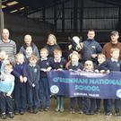 Pupils and teachers of O'Brennan National School in Kielduff launching their big raffle, first prize in which is the value of this freshly-calved heifer worth at least €1,400