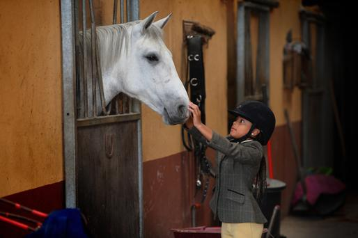 Horse whisperer Aithali Mulumba gently prepares her beloved Blennerville Lady for a little showjumping at the Blennerville Equestrian Centre last week. Photo by Domnick Walsh