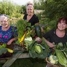 What you sow you reap: Noreen, Linda and Lorraine Keane with a selection of the produce the grow at the Castleisland Community Garden. Photo by John Reidy