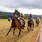 In action: horse and jockey pictured in full flow at the Athea races which held their inaugural June race meeting on the land of Helen and Michael O'Keeffe last Sunday. Photos by Stella McGrath