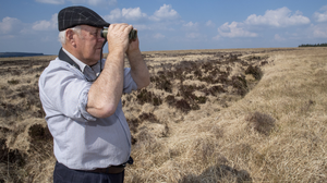 Curlew champion Tim O'Donoghue scouring the mountainside of Lyre for signs of the curlew. Photos by Domnick Walsh