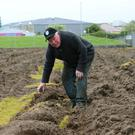 Grounds man Vincent Linnane from Tralee walks the pitch at Austin Stack Park