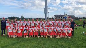 St. Brides Senior Ladies Camogie Team that beat St Kevins in Darver in the League Cup Final