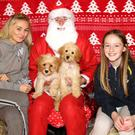 Aoife O'Keeffe, Santa and Sophie Cummins with dogs Mabel and Belle