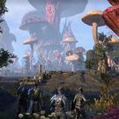 While Elder Scrolls Online has improved with Morrowind's release, it still isn't enough of a jump to warrant a resounding commendation.
