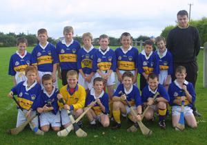 BLAST FROM THE PAST - Some of the boys who took part in a hurling blitz in Cushinstown in 2001
