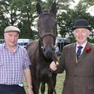 Donal Golan and John Murphy with 'Harley' pictured the Adamstown Show recently