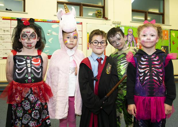 Cushinstown NS senior infants Isabella Bradley, Lilyanna Fenlon, Jay Davitt, Mike Morrissey and Faye O'Neill during the school's Hallowee'en fancy dress last week