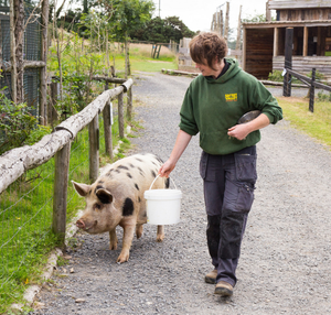 Ann O'Connor with one of the pigs living at Secret Valley Wildlife Park