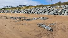 Some of the discarded stones on Duncannon beach
