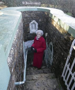 Frances Ryan from Castlebridge at St David's Well