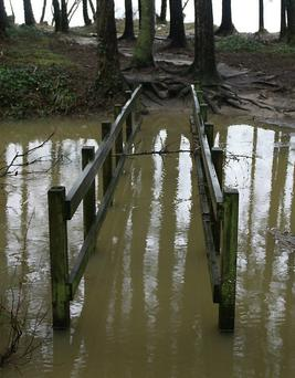 Footbridge under water in Courtown woods.