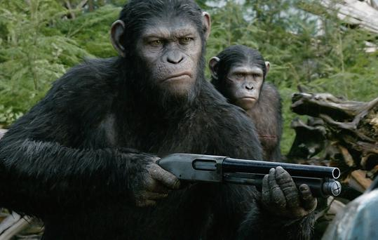 A still from Dawn Of The Planet Of The Apes