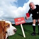 There has been a call to show the red card to pet owners who do not clean up after their dogs