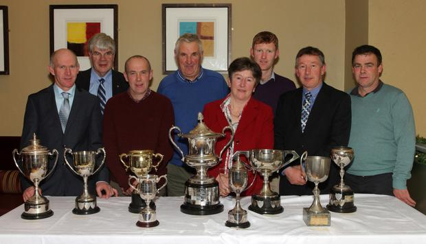 Wexford sheep breeders win for being the best in their own fields