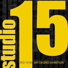 An exhibition by third year art degree students from IT Carlow's School of Art and Design will run until March 19