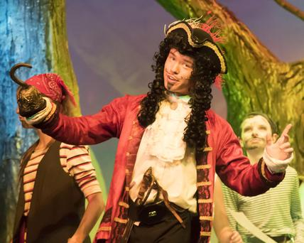 Peter Rothwell as Captain Hook