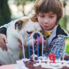 Regardless of the breed, no dog should ever be left unsupervised with a child