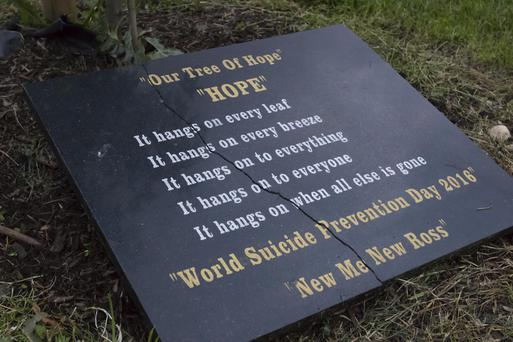 The Hope plaque damaged in Pearse Park